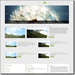 free-responsive-website-template-respond-1-5-html5-css3-bootstrap