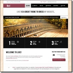 like-responsive-multipurposes-html5css3-theme